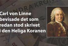 Photo of Carl von Linne bevisade det som redan stod skrivet i den Heliga Koranen