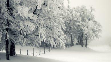 Photo of Vad ska vi göra med vinterdepression?