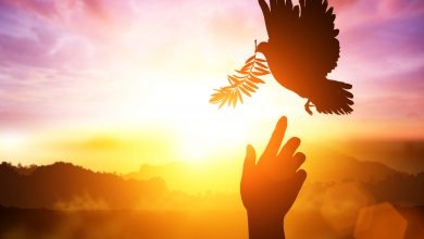 Photo of Genuin inre fred och vägen till den
